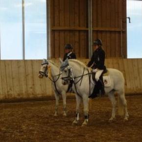 Lilly und Billy im Reiterwettbewerb mit Sprung